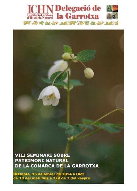 Cartell VIII Seminari
