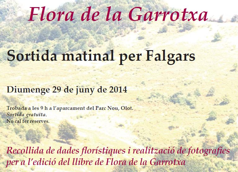 flora 29 de juny